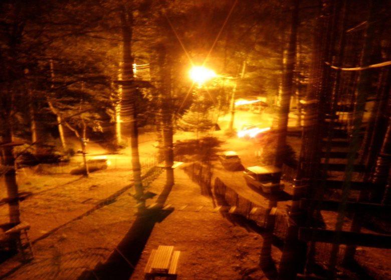 Aire de pique-nique Forêt Suspendue