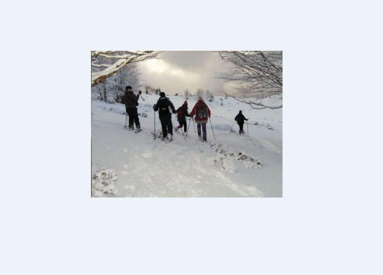 Balades en raquettes avec accompagnateurs – Aventure Nordique