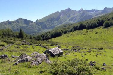 La cabane de Bouy